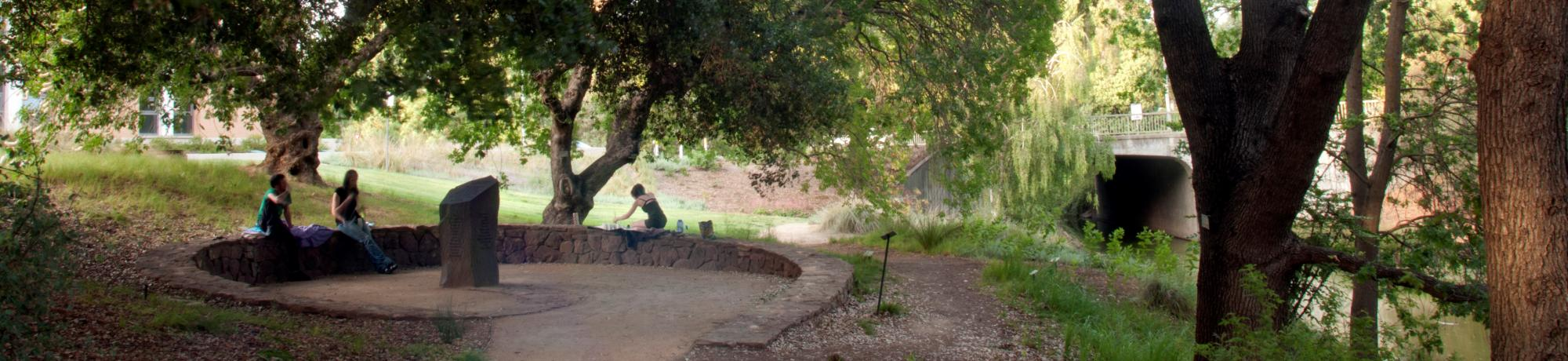 Students in the Native American Contemplative Garden